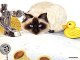 Persian cat - Cat Paintings by Mortimer Anne5 pics