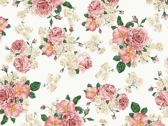 pink poeny flowers background sweet flowers background