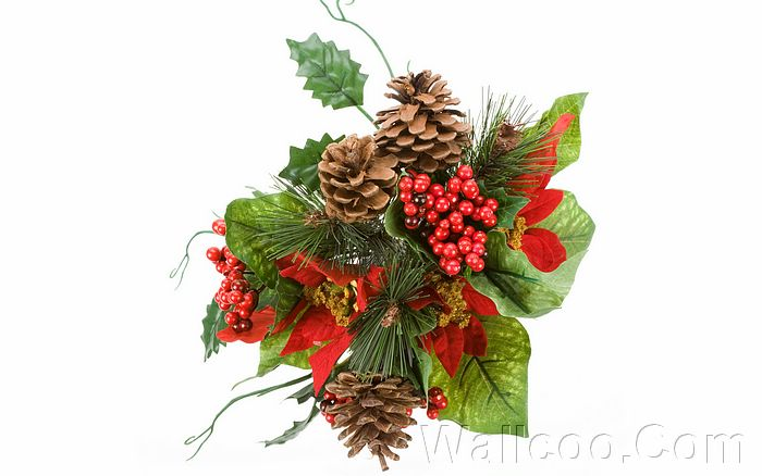 picture christmas decoration with holly and pine cones