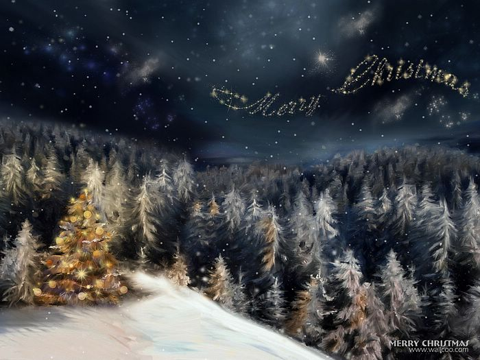 Christmas Illustrations in Mixed Styles  - Christmas night in forest,  in the starry sky  Wallpaper 6