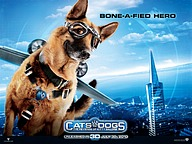 Cats & Dogs: The Revenge of Kitty Galore (2010 )11 pics