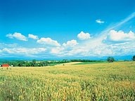 Beautiful Korea, countryside scenery in S.Korea45 pics