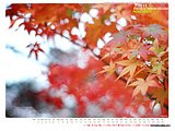 November 2004 Calendar Wallpapers42 pics
