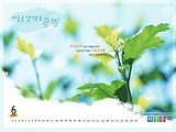 Dreamlike Scene Wallpaper Calendar (Vol.1)19 pics